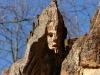 die-baumwelt-skulpturenpfad-waldmenschen-waldhaus-freiburg-thomas-rees275