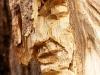 die-baumwelt-skulpturenpfad-waldmenschen-waldhaus-freiburg-thomas-rees303