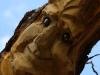die-baumwelt-skulpturenpfad-waldmenschen-waldhaus-freiburg-thomas-rees312