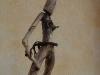 corippo-skulpturen-aus-dem-tal-de-gruenen-wassers-219