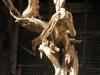 corippo-skulpturen-aus-dem-tal-de-gruenen-wassers-248