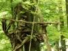 WaldMenschen, 2014, thomas rees 31
