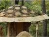 Dach Riesenpilz