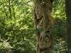 Hexenring , der Suchende, thomas rees 34