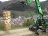 grieswurz-zauberweg-am-hasenhorn-todtnau-thomas-rees-643