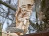 Lebensbaum 039