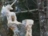 Lebensbaum 041
