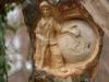 Lebensbaum 081