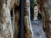 Hexenring , die Baustelle, thomas rees 130