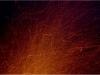 Scheibenschlagen am Baum der Erkenntnis, März 2014, thomas rees 02
