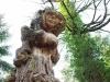 waldmenschen-thomas-rees-434