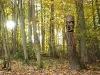 skulpturenpfad-waldmenschen-waldhaus-freiburg-thomas-rees262