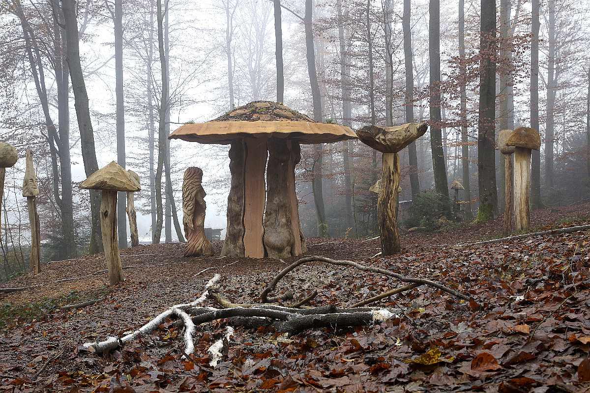 Hexenring , Herbstgrau, thomas rees 15