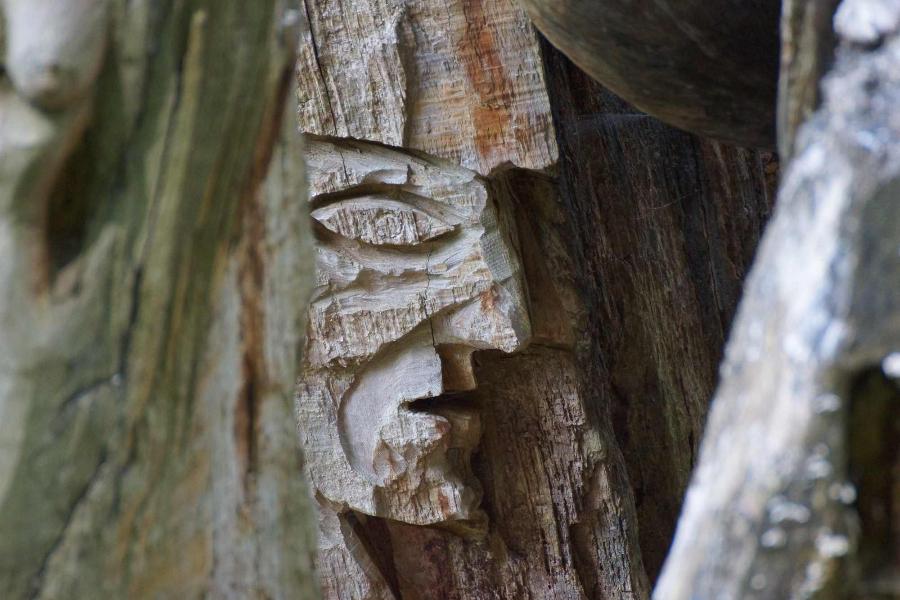 skulpturenpfad-waldmenschen-freiburg-thomas-rees-10