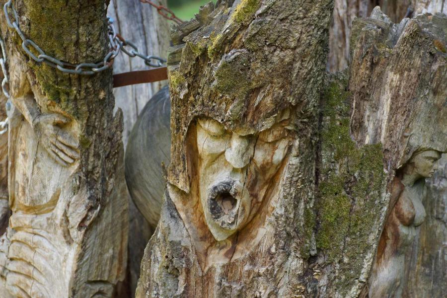 skulpturenpfad-waldmenschen-freiburg-thomas-rees-78