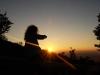 windbohrer, Sonnenwende 21. Juni 2008