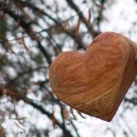 Baum der Weisheit - das Herz