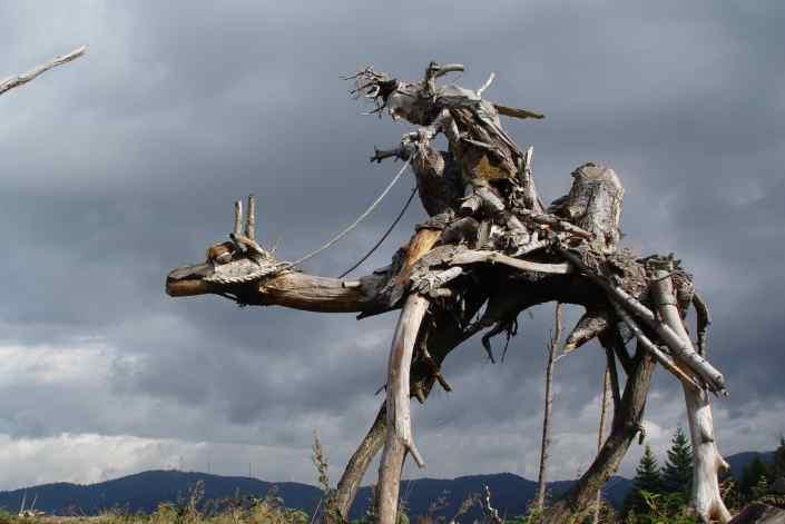 das Kamel aus der Krone einer Weißtanne, Kamelberg