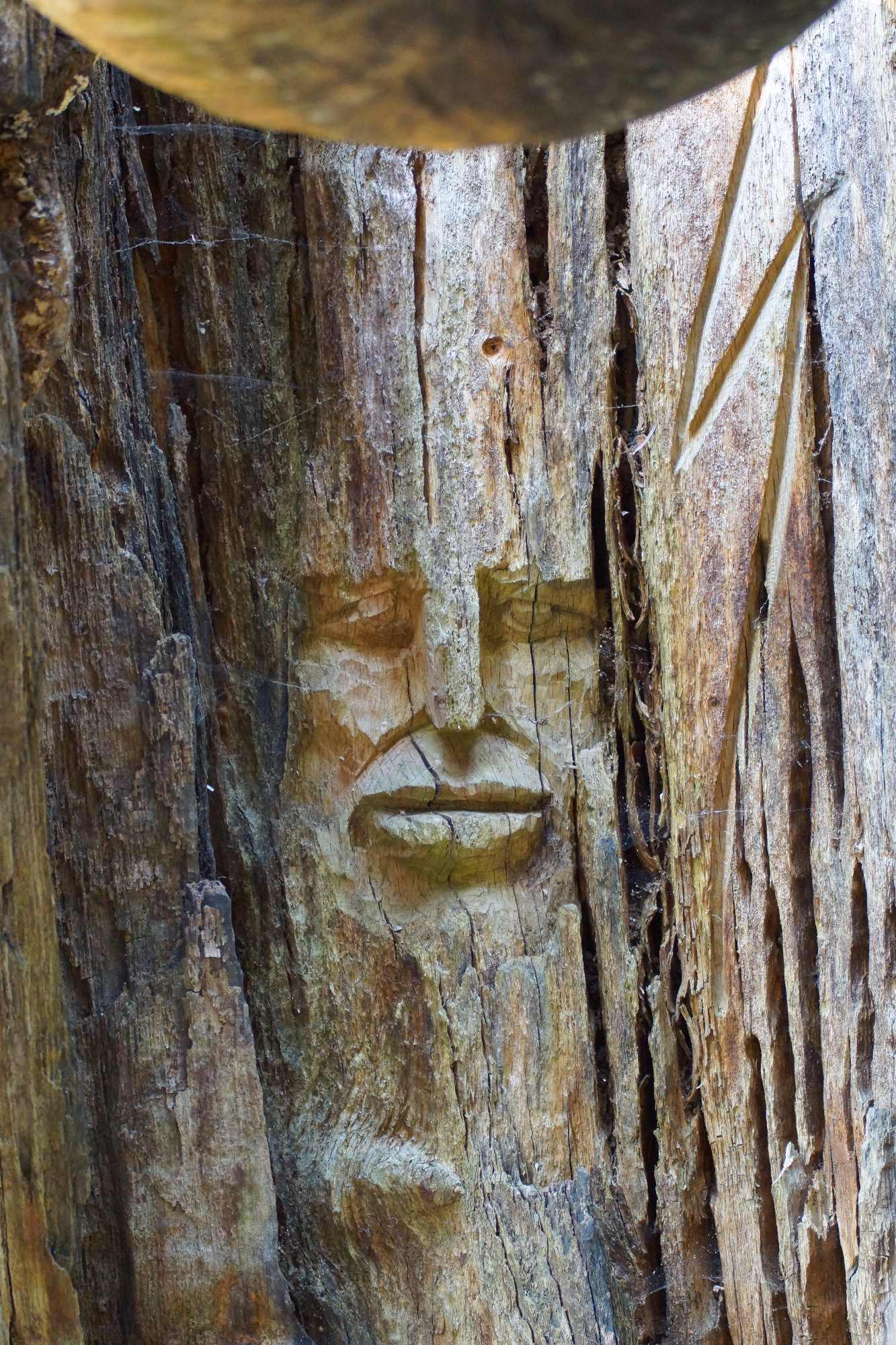 die Baumwelt, Skulpturenpf