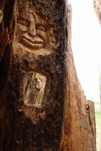 die Baumwelt, Skulpturenpfad WaldMenschen, Waldhaus Freiburg, thomas rees289