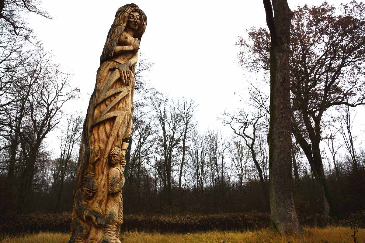 die Eiche im Opfinger Wald, thomas rees November 2012