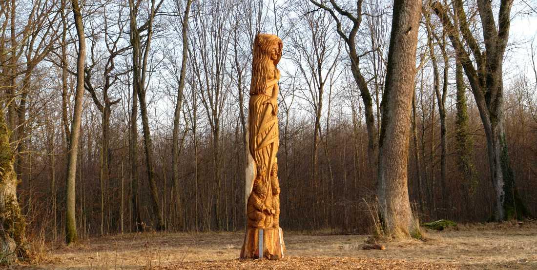 die Eiche im Opfinger Wald, thomas rees