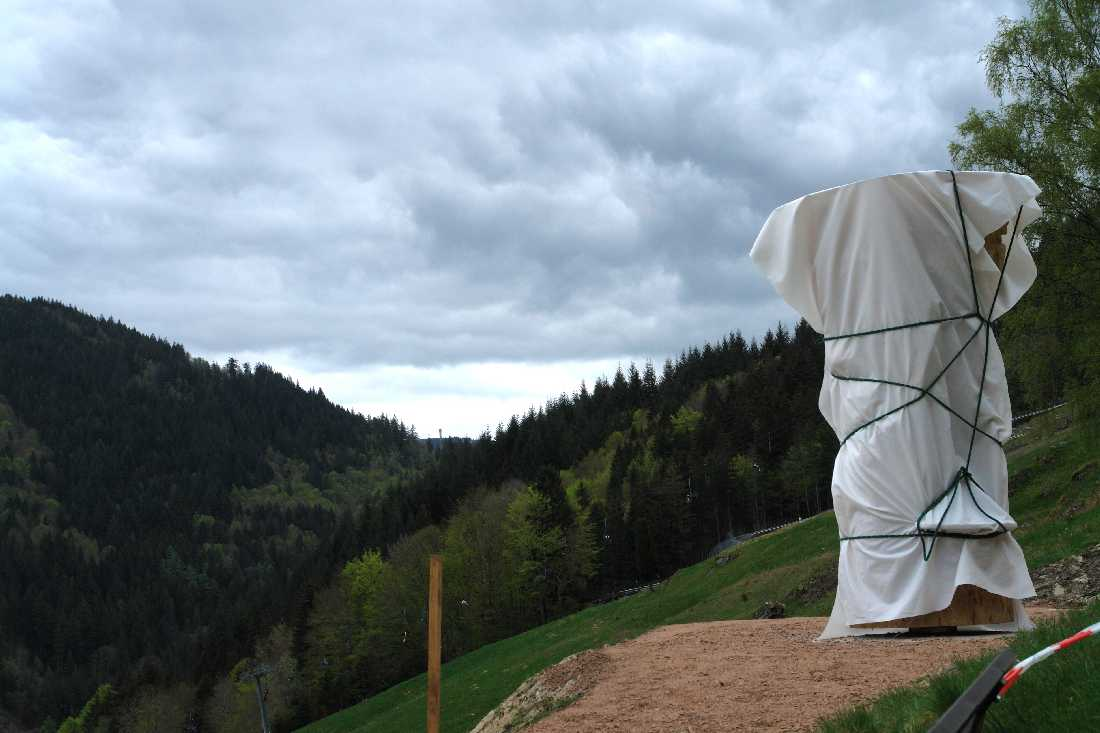 Grieswurz, Zauberweg am Hasenhorn, Einweihungsfeier 1. Mai 2012 Todtnau, thomas Rees