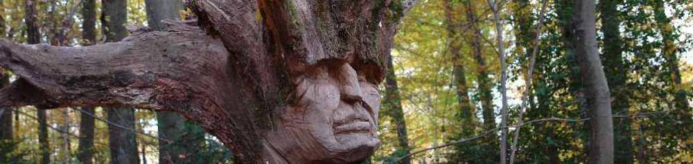 Freiheit, Skulpturenpfad WaldMenschen