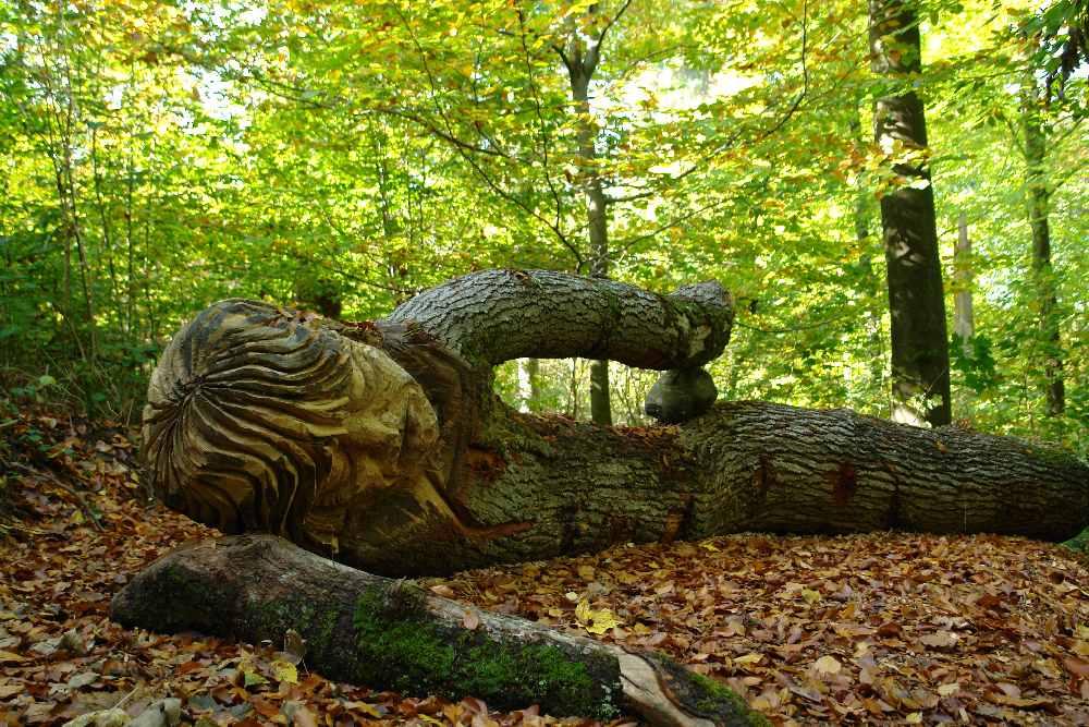 Skulpturenpfad WaldMenschen, der schlafende Riese Waldhaus Freiburg, tho