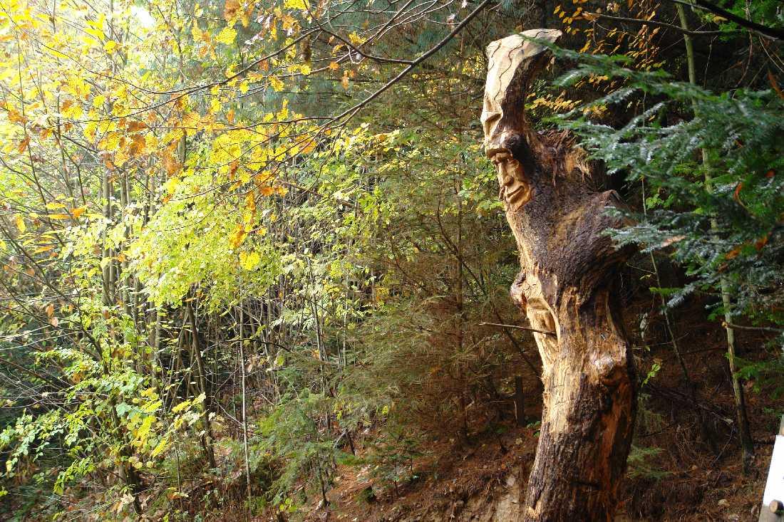 WaldMenschen, der Zauberer
