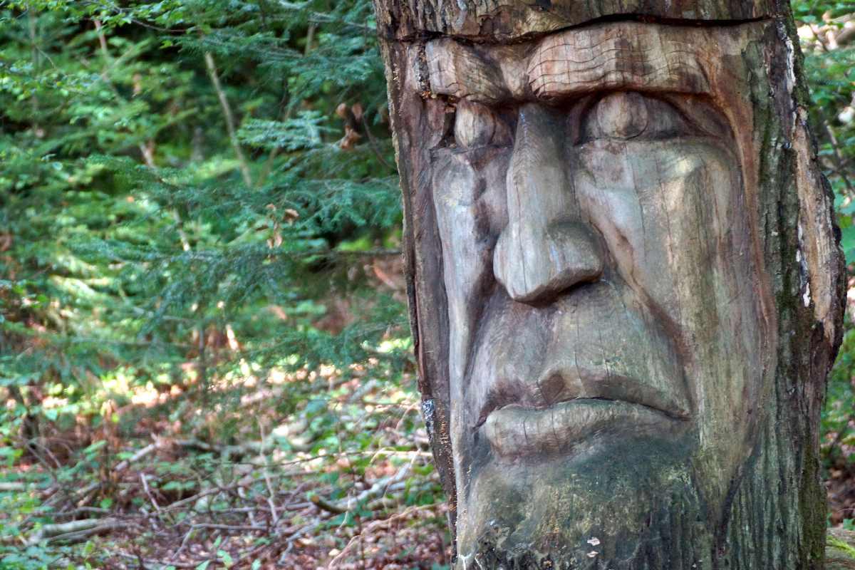 der Holzkopf, Skulpturenpfad WaldMenschen Freiburg