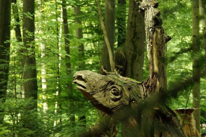 WaldMenschen, 2014, thomas rees 30