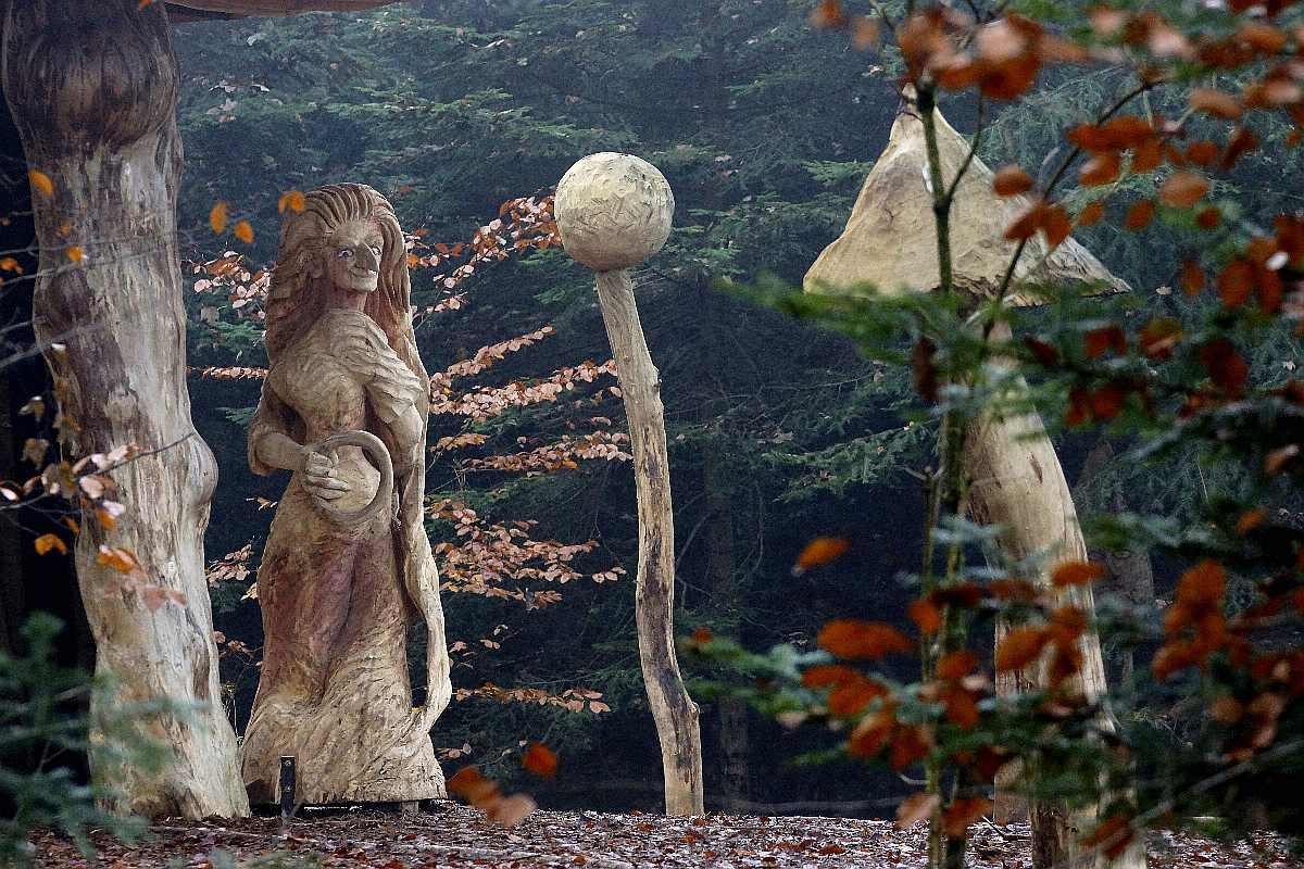 "Mycelium, ""Novembergrau"", thomas rees03"