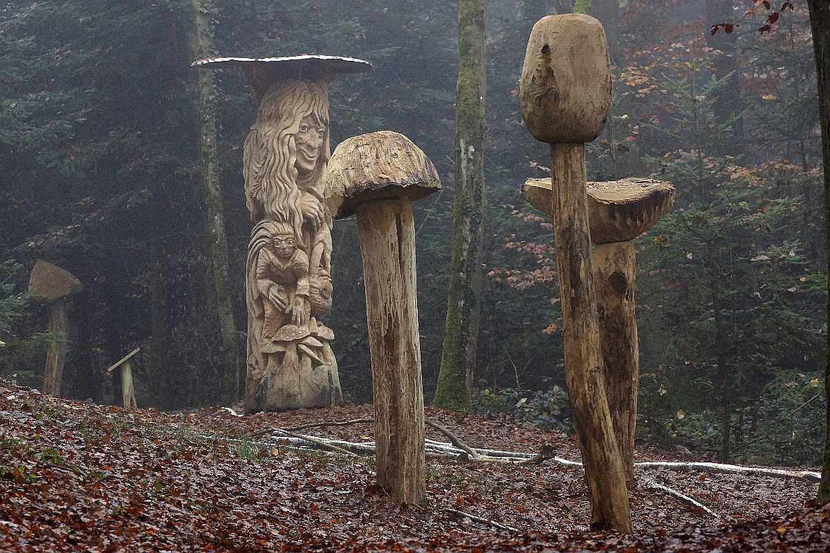 "Mycelium, ""Novembergrau"", thomas rees 16"