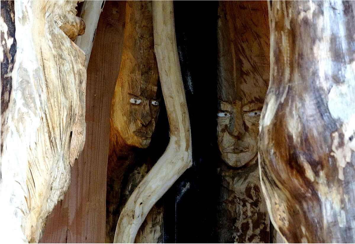 Mycelium, Novembergrau, thomas rees 41