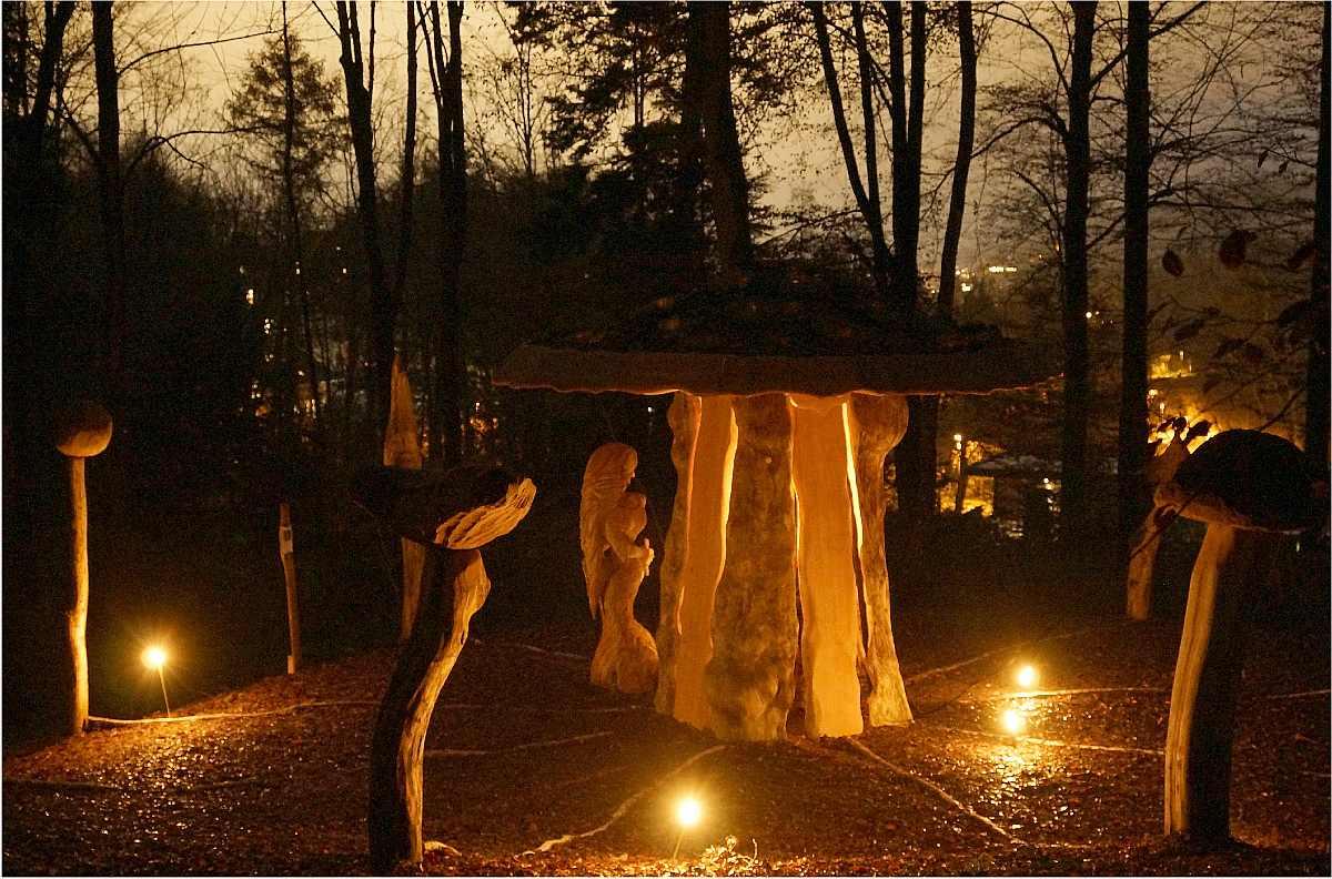 Mycelium,Weihnachten 2014, thomas rees 01