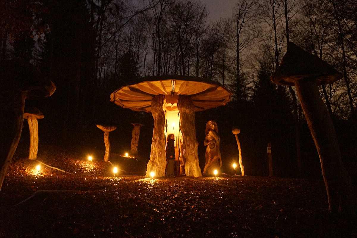 Mycelium,Weihnachten 2014, thomas rees 03