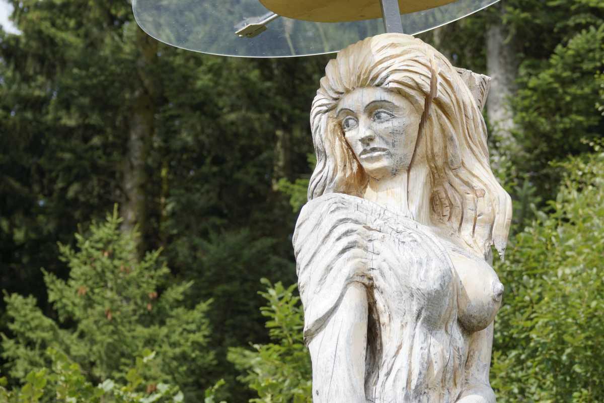ergraute Artemis August 2015 (1)