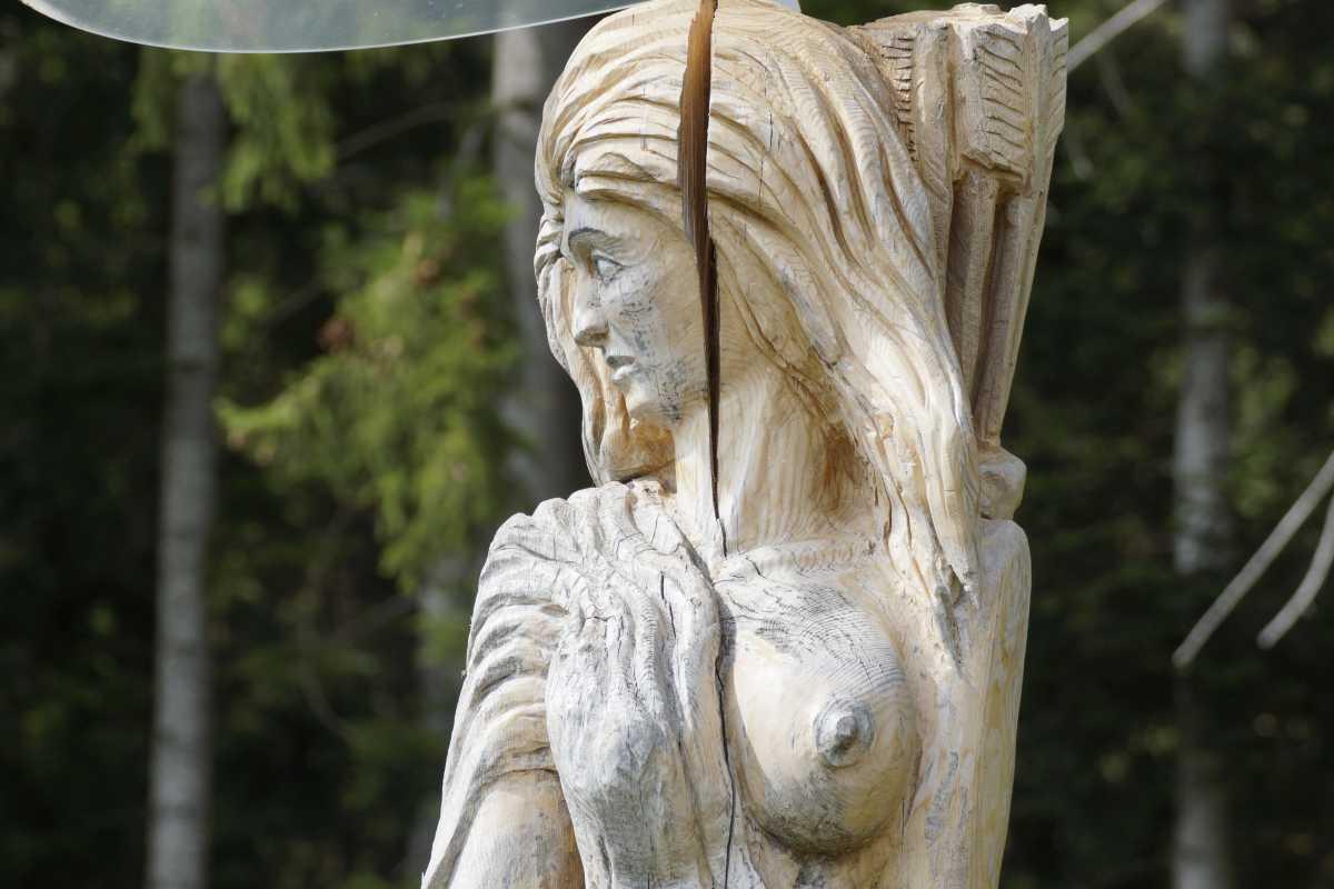 ergraute Artemis August 2015 (2)