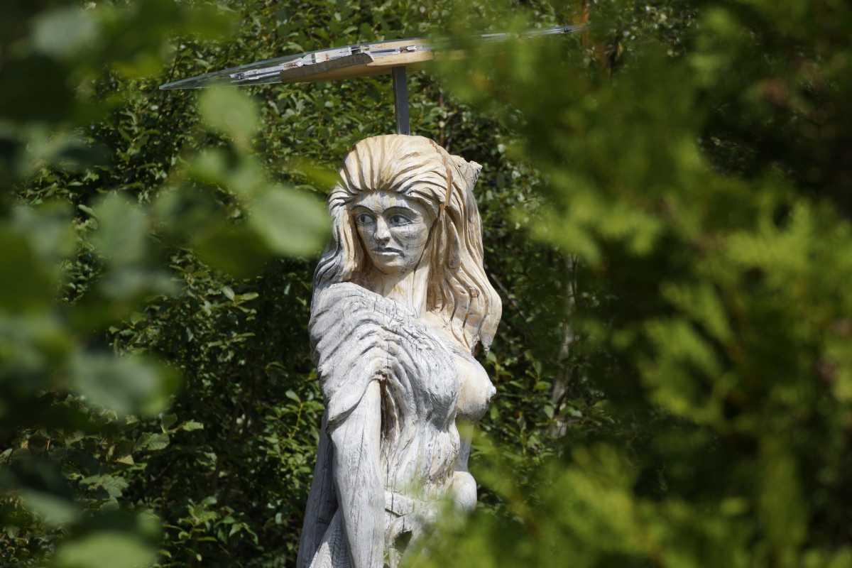 ergraute Artemis August 2015 (6)