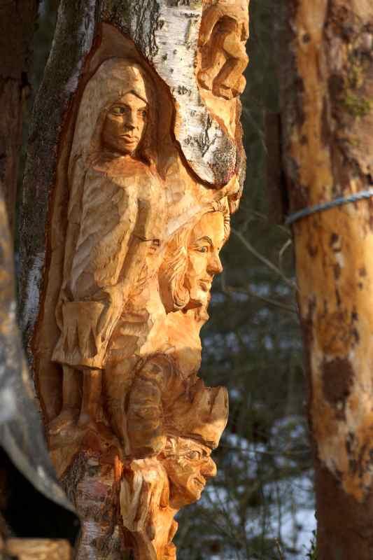 Lebensbaum 100