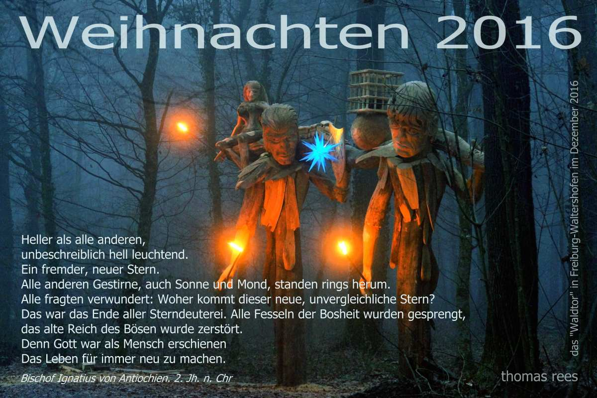 dezembernacht-das-waldtor-in-freiburg-waltershofen-thomas-rees-01