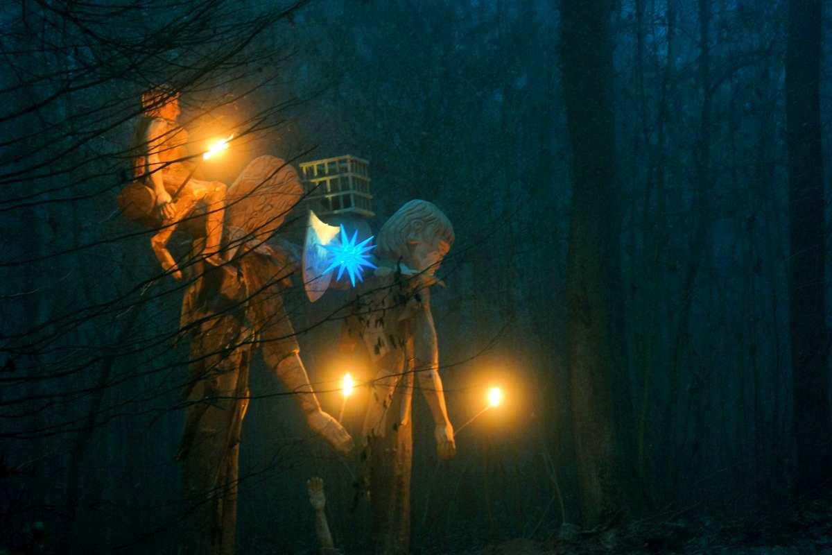 dezembernacht-das-waldtor-in-freiburg-waltershofen-thomas-rees-11