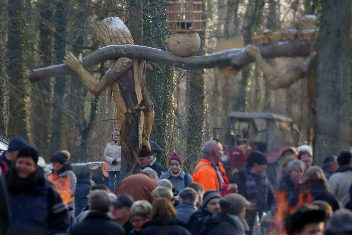 Waldtor, Holzversteigerungsfest, thomas rees 07