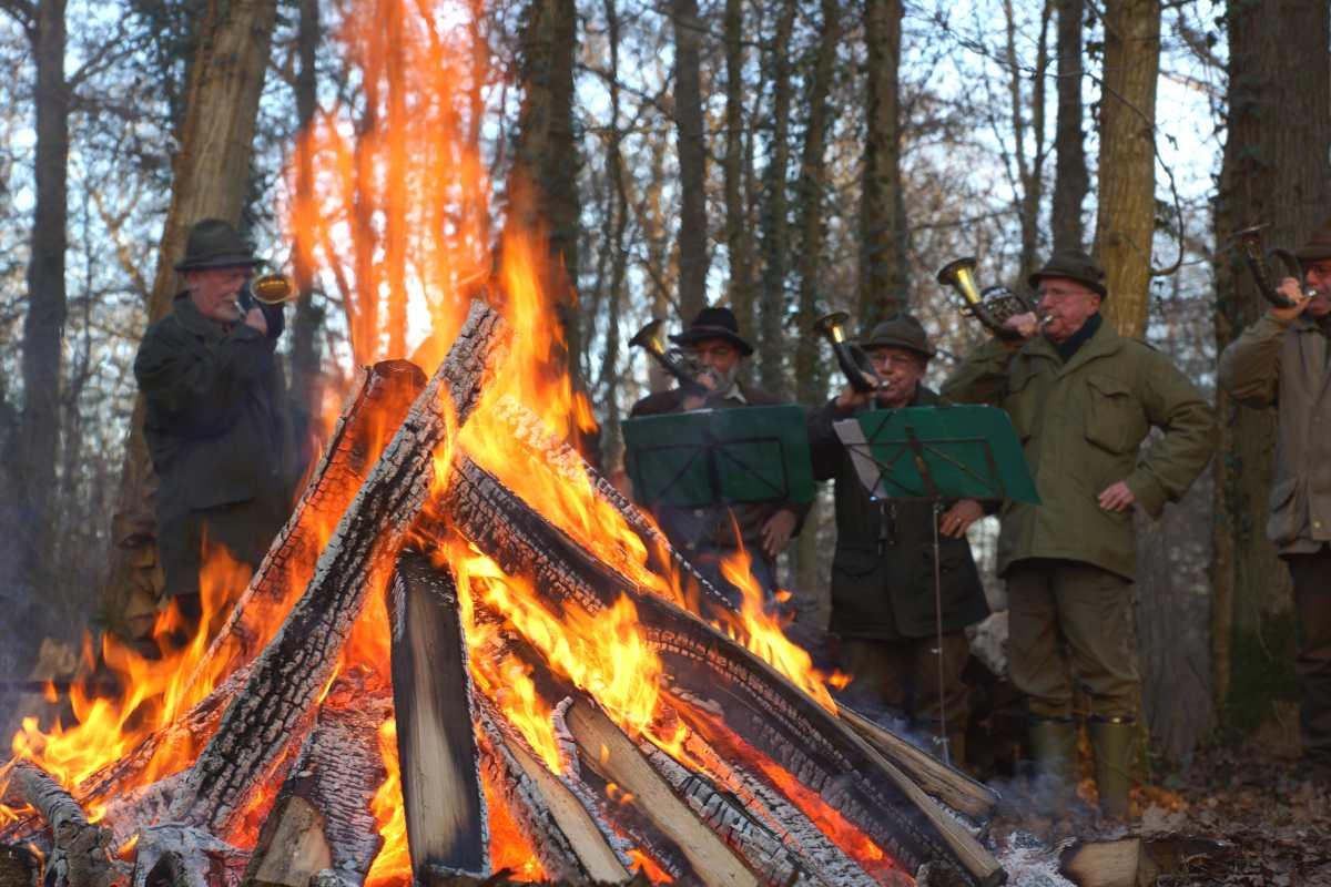 Waldtor, Holzversteigerungsfest, thomas rees 17