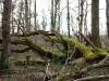 die-baumwelt-skulpturenpfad-waldmenschen-waldhaus-freiburg-thomas-rees263