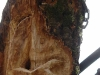 die-baumwelt-skulpturenpfad-waldmenschen-waldhaus-freiburg-thomas-rees296
