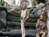 corippo-skulpturen-aus-dem-tal-de-gruenen-wassers-254