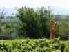 der Bacchus vom Tuniberg, vom Weib, Wein und Wiedehopf,  thomas rees 03