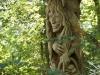 Hexenring , der Suchende, thomas rees 35
